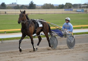 PICKER AIMING AT GOULBURN CUP WITH CONDAGEN
