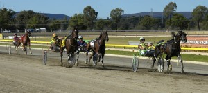 HEWITT MEMORIAL HIGHLIGHTS HARNESS CARD AT GOULBURN