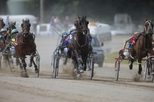 Goulburn harness racing