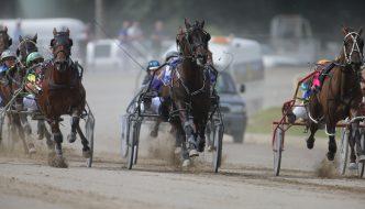 Goulburn harness racing
