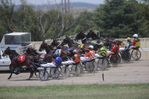 Horses line up for the start at Goulburn Paceway