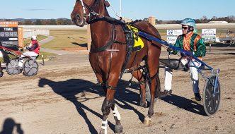 2017 Goulburn Sapling Stakes winner Seeuinnashville