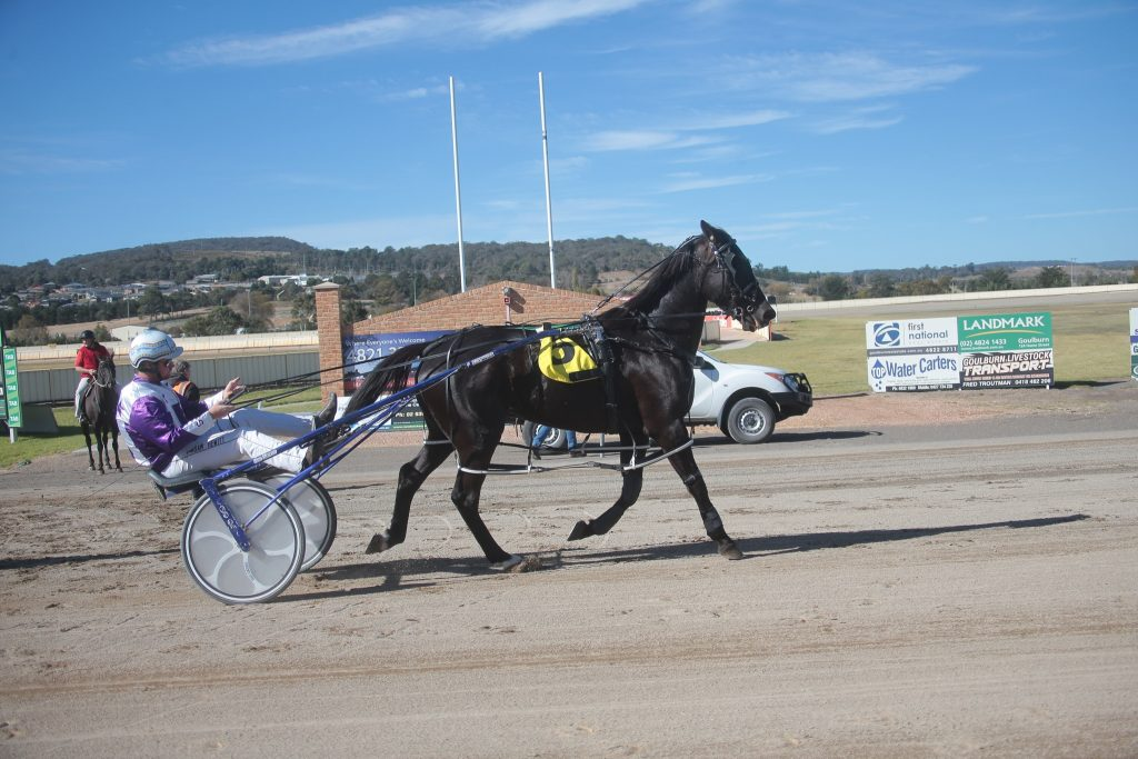 Billysbredone and Sam Hewitt at Goulburn Paceway