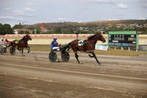 Culture King & Luke McCarthy race away to win 2020 Goulburn Soldiers Club Tom & Angela Hewitt Memorial
