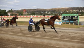 Culture King & Luke McCarthy race away to win 2020 Goulburn Soldiers Club Tom & Angela Hewitt Memorial