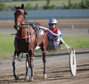 Dancing Chick and Amy Day at Goulburn Paceway