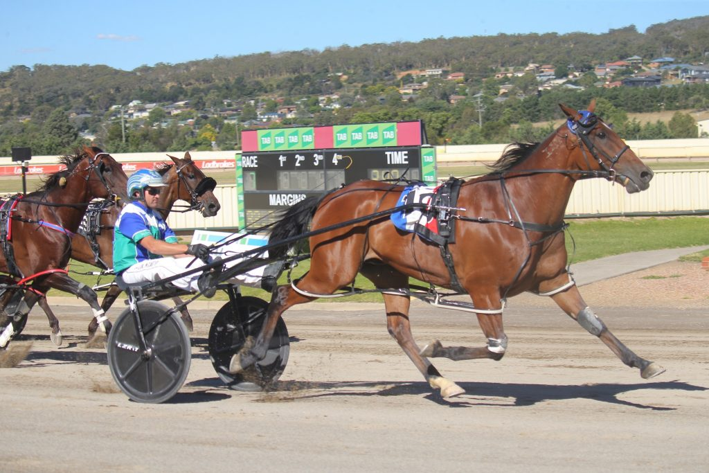 Pacer Alta Orlando wins teh 2021 Frank & Edna Day Goulburn Cup