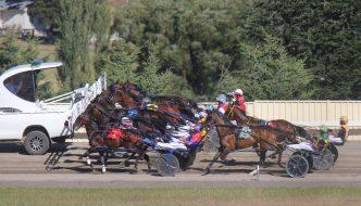 Harness racing at Goulburn